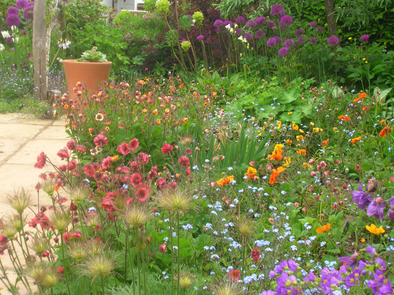 National Collection Of Geum S